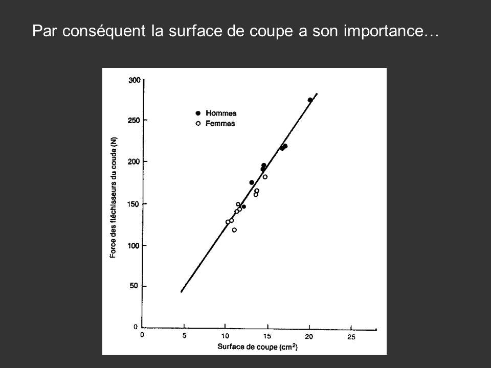 Par conséquent la surface de coupe a son importance…
