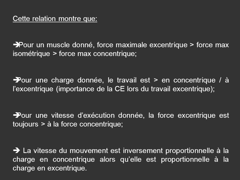 Cette relation montre que: Pour un muscle donné, force maximale excentrique > force max isométrique > force max concentrique; Pour une charge donnée,
