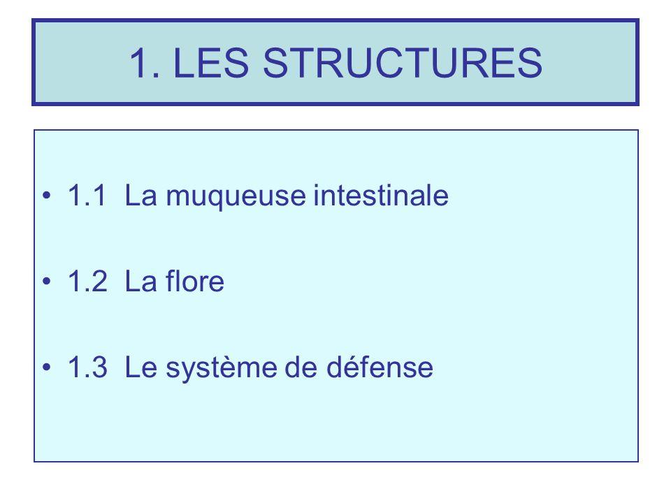 1.1 LA MUQUEUSE INTESTINALE Le grêle est organisé pour multiplier la surface utile côté muqueux: pour 4 mètres de grêle la surface côté séreux est =0.4m2, côté muqueux =250m2 Le grêle est un cylindre de 4 m de long où la muqueuse est plissée en valvules conniventes transversales qui multiplient la surface par 3, les valvules sont plissées en villosités qui multiplient par 30, enfin les microvillosités de la bordure en brosse de lentérocyte multiplient la surface par 60.