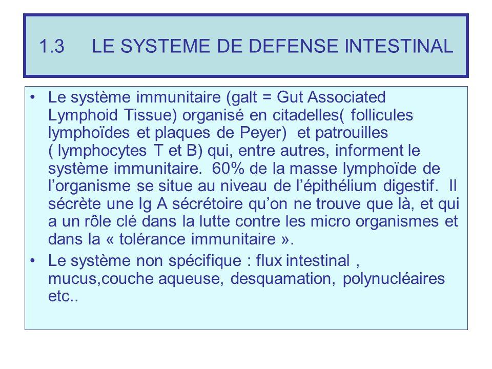 1.3 LE SYSTEME DE DEFENSE INTESTINAL Le système immunitaire (galt = Gut Associated Lymphoid Tissue) organisé en citadelles( follicules lymphoïdes et p