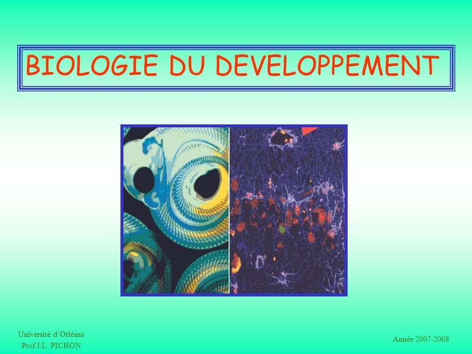 BIOLOGIE DU DEVELOPPEMENT Université dOrléans Prof J.L. PICHON Année 2007-2008