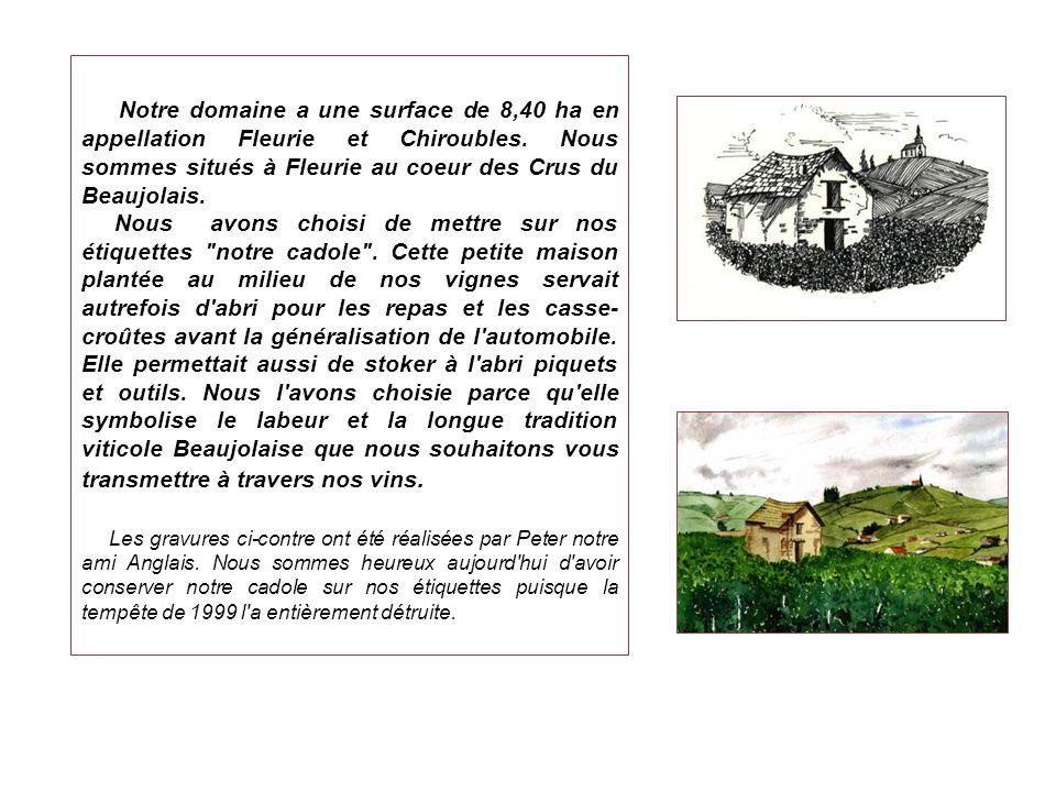 Notre domaine a une surface de 8,40 ha en appellation Fleurie et Chiroubles. Nous sommes situés à Fleurie au coeur des Crus du Beaujolais. Nous avons