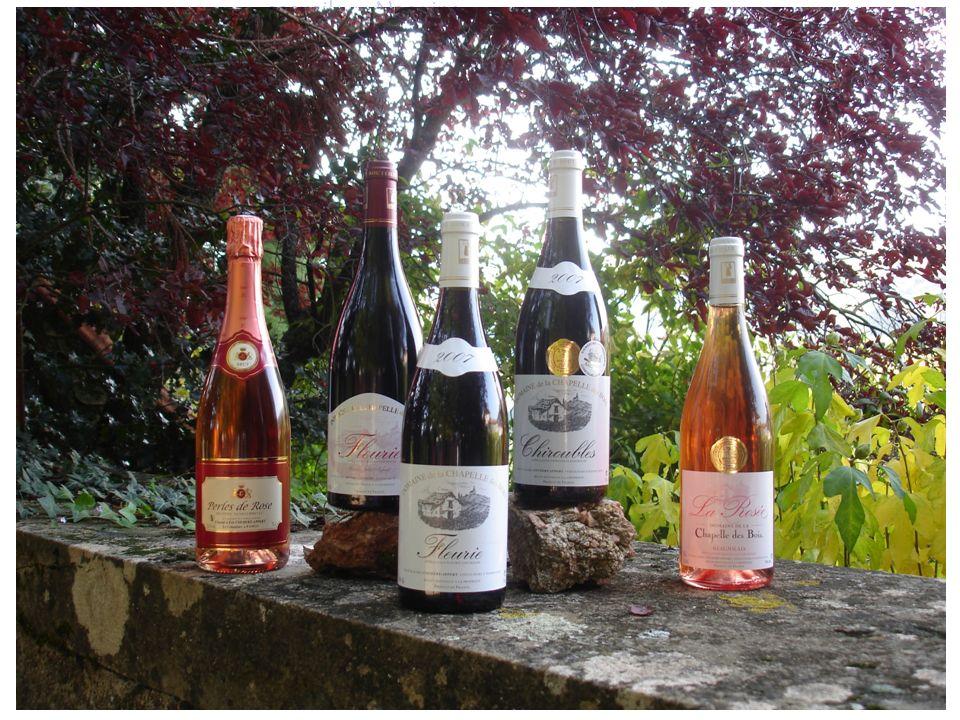 accueil accueil Nos vins Nos vins