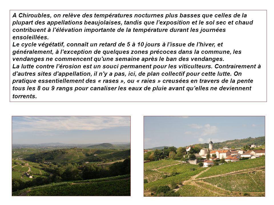 A Chiroubles, on relève des températures nocturnes plus basses que celles de la plupart des appellations beaujolaises, tandis que l'exposition et le s