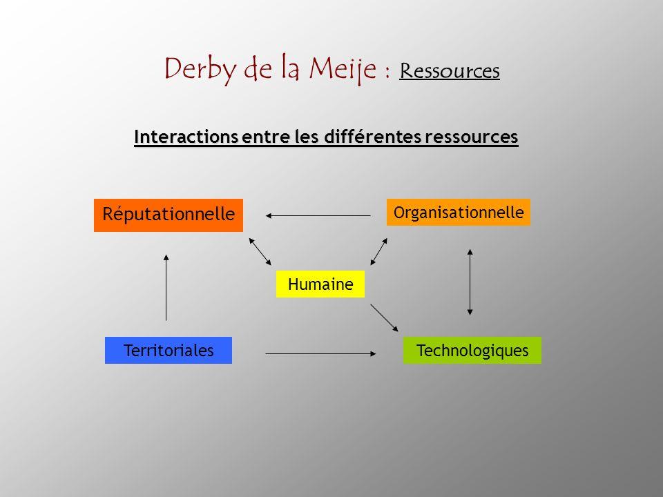 Derby de la Meije : Ressources Réputationnelle Territoriales Organisationnelle Humaine Technologiques Interactions entre les différentes ressources