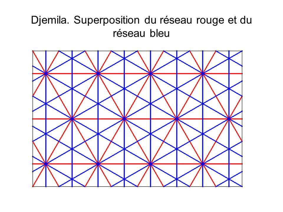 Djemila. Superposition du réseau rouge et du réseau bleu