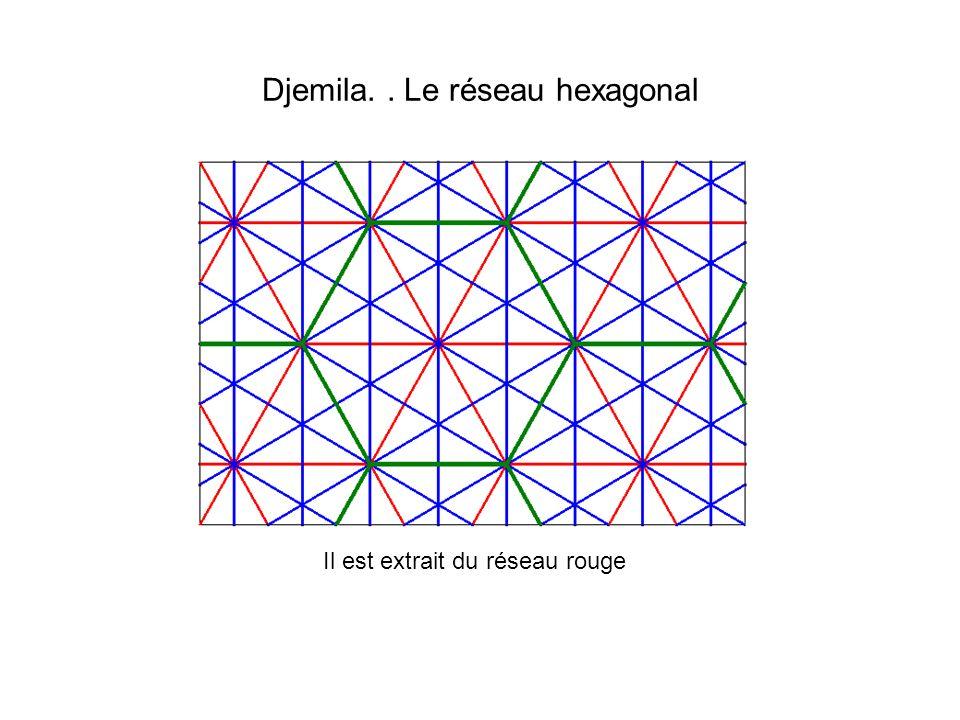 Djemila.. Le réseau hexagonal Il est extrait du réseau rouge