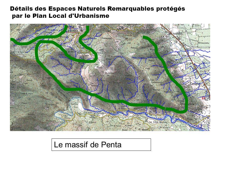 Détails des Espaces Naturels Remarquables protégés par le Plan Local d'Urbanisme Le massif de Penta