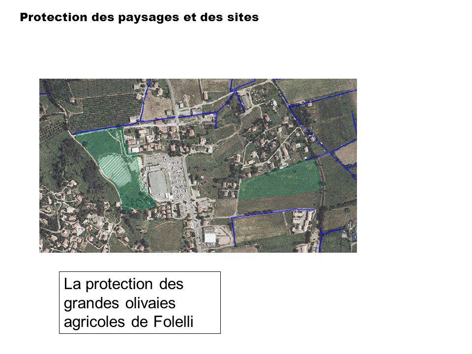 Protection des paysages et des sites La protection des grandes olivaies agricoles de Folelli