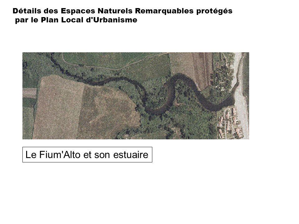 Détails des Espaces Naturels Remarquables protégés par le Plan Local d'Urbanisme Le Fium'Alto et son estuaire