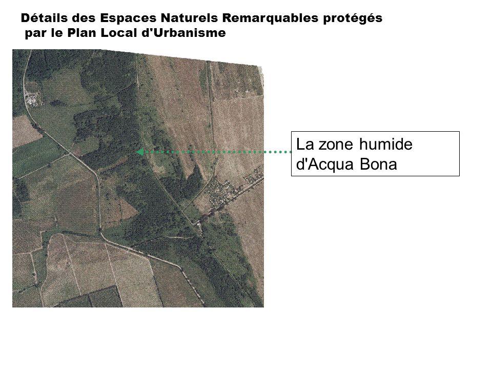 Détails des Espaces Naturels Remarquables protégés par le Plan Local d'Urbanisme La zone humide d'Acqua Bona