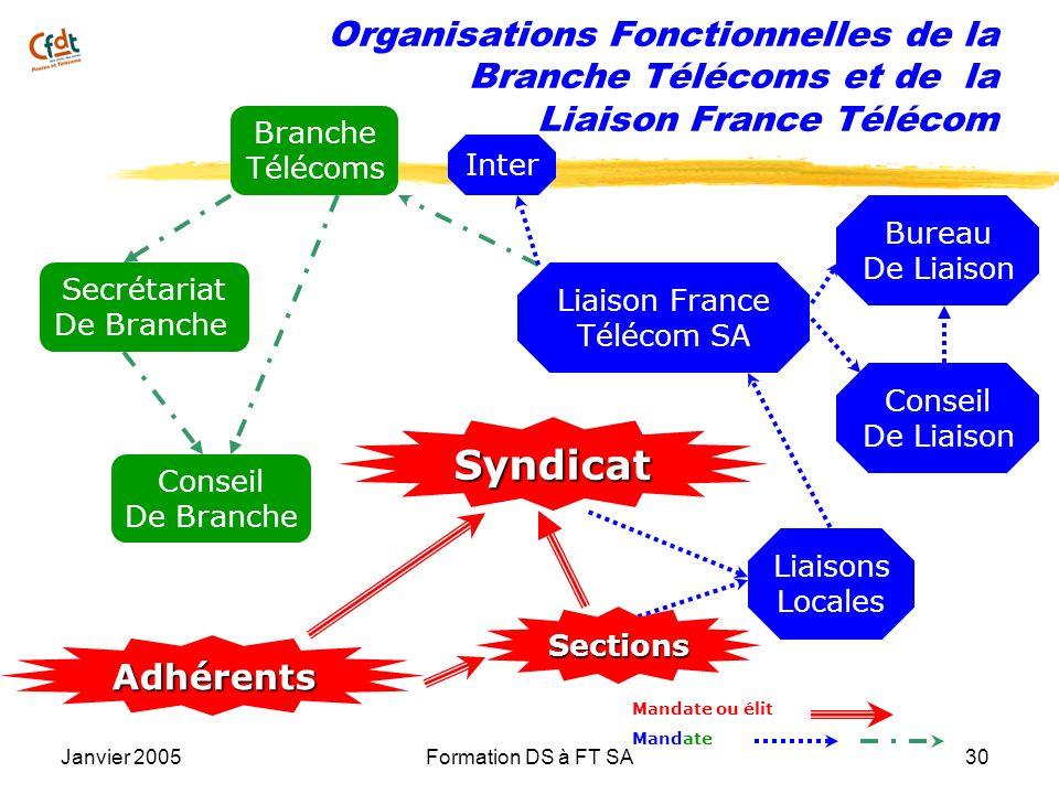 Janvier 2005Formation DS à FT SA30 Organisations Fonctionnelles de la Branche Télécoms et de la Liaison France Télécom Conseil De Liaison Bureau De Li