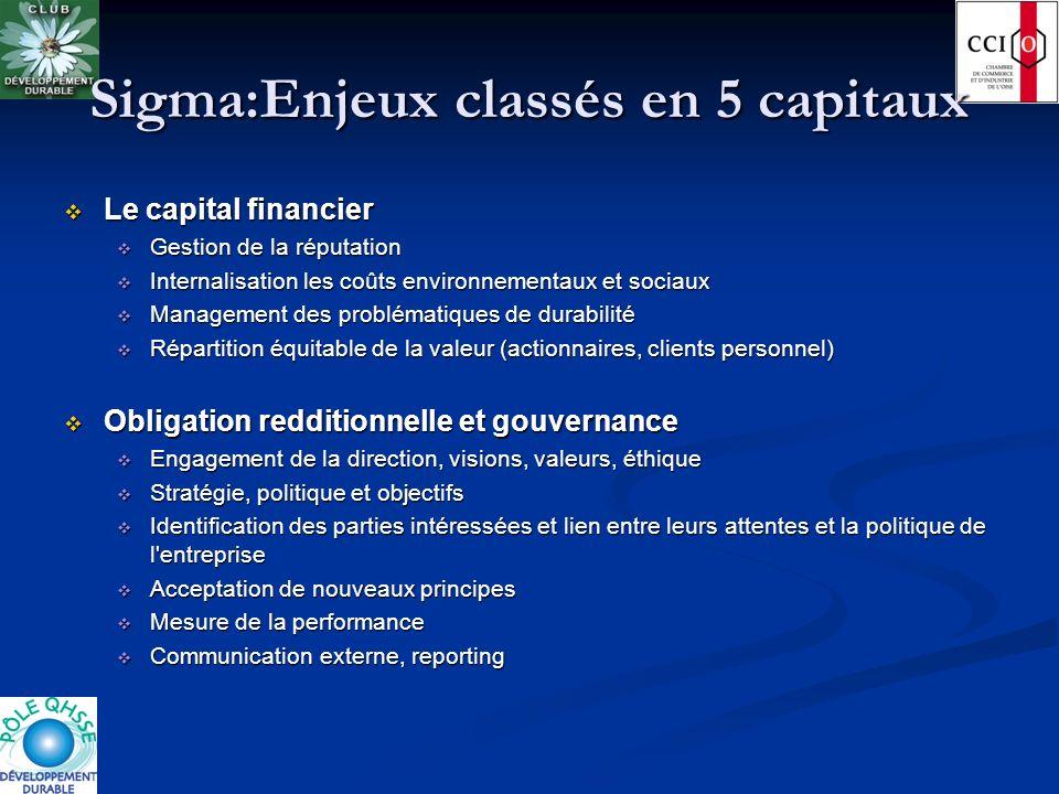Sigma:Enjeux classés en 5 capitaux Le capital financier Le capital financier Gestion de la réputation Gestion de la réputation Internalisation les coû