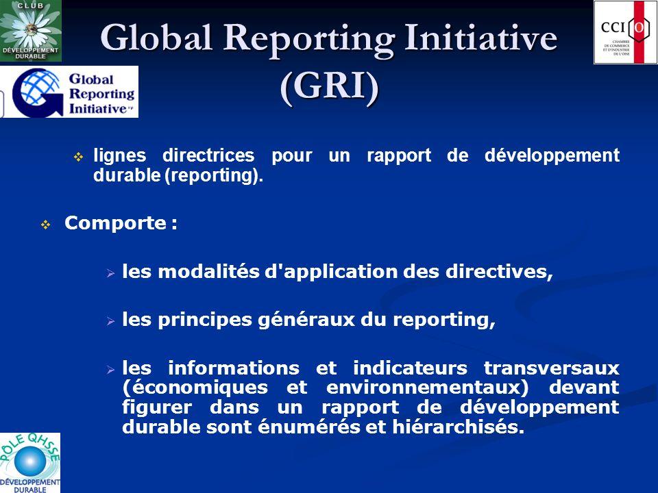 Global Reporting Initiative (GRI) lignes directrices pour un rapport de développement durable (reporting). Comporte : les modalités d'application des