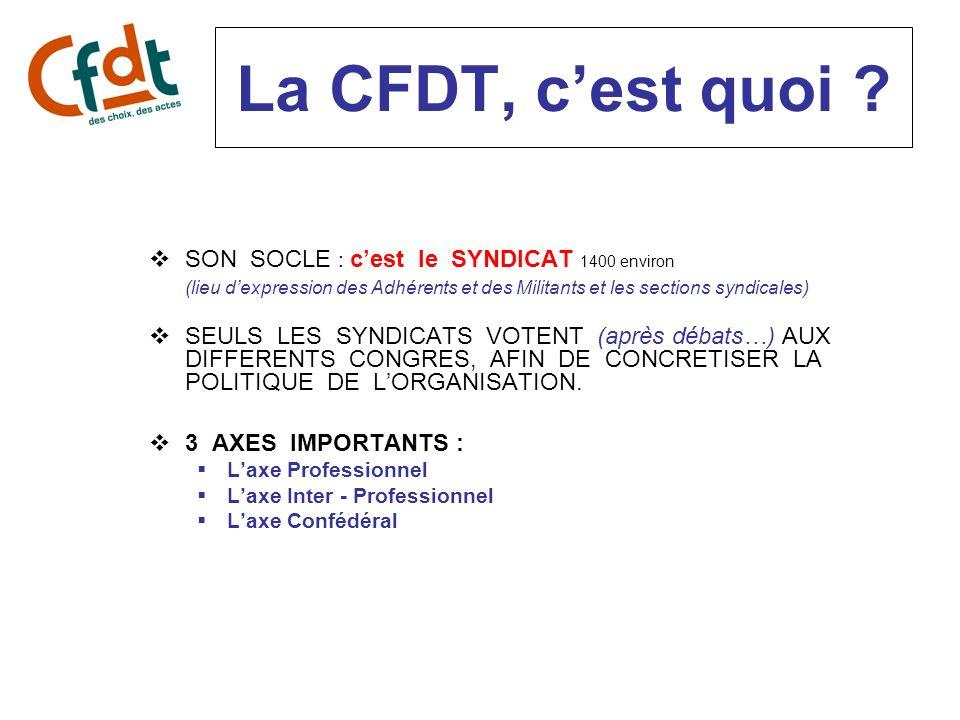 La CFDT, cest quoi ? SON SOCLE : cest le SYNDICAT 1400 environ (lieu dexpression des Adhérents et des Militants et les sections syndicales) SEULS LES
