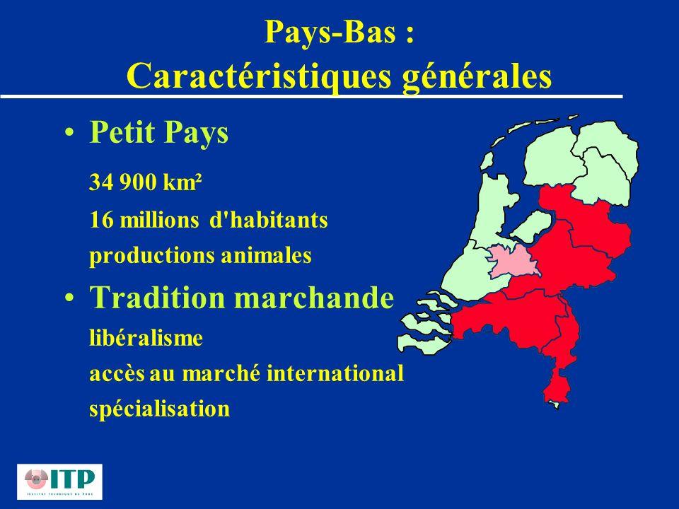 Pays-Bas : Caractéristiques générales Petit Pays 34 900 km² 16 millions d'habitants productions animales Tradition marchande libéralisme accès au marc