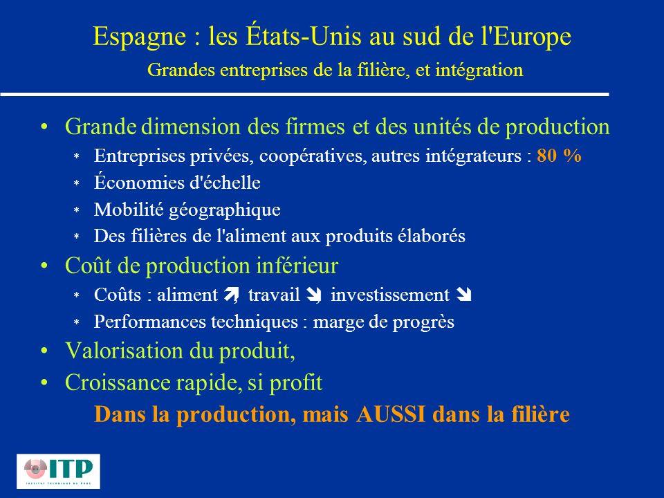 Espagne : les États-Unis au sud de l'Europe Grandes entreprises de la filière, et intégration Grande dimension des firmes et des unités de production