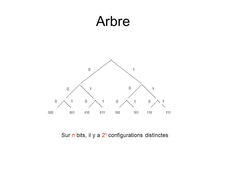 Arbre 01 1 10 1 1 0 0 0 0 0 1 1 Sur n bits, il y a 2 n configurations distinctes 000001010011100101110111