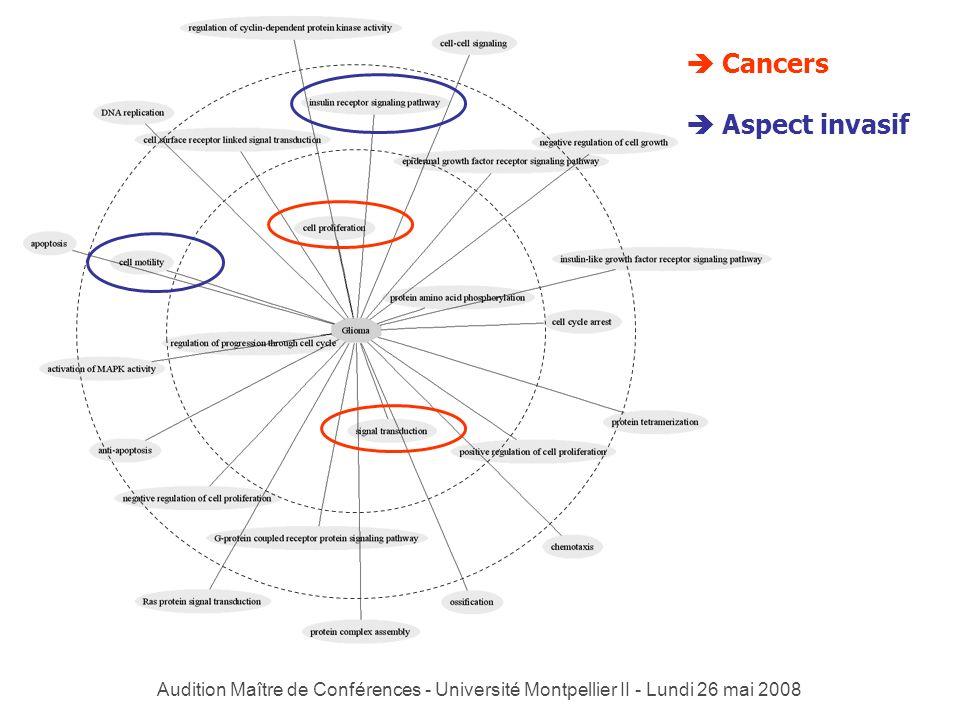 Audition Maître de Conférences - Université Montpellier II - Lundi 26 mai 2008 Cancers Aspect invasif