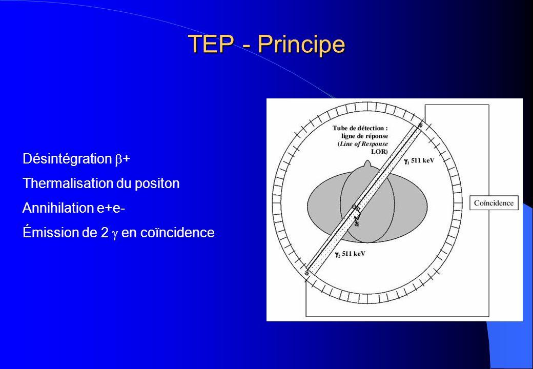 TEP - Principe Désintégration + Thermalisation du positon Annihilation e+e- Émission de 2 en coïncidence