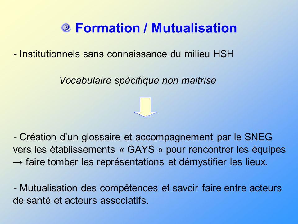 Formation / Mutualisation - Institutionnels sans connaissance du milieu HSH Vocabulaire spécifique non maitrisé - Création dun glossaire et accompagne