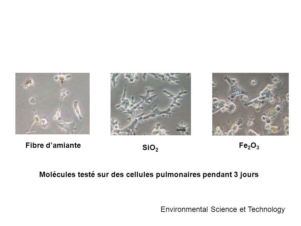 SiO 2 Fibre damianteFe 2 O 3 Environmental Science et Technology Molécules testé sur des cellules pulmonaires pendant 3 jours