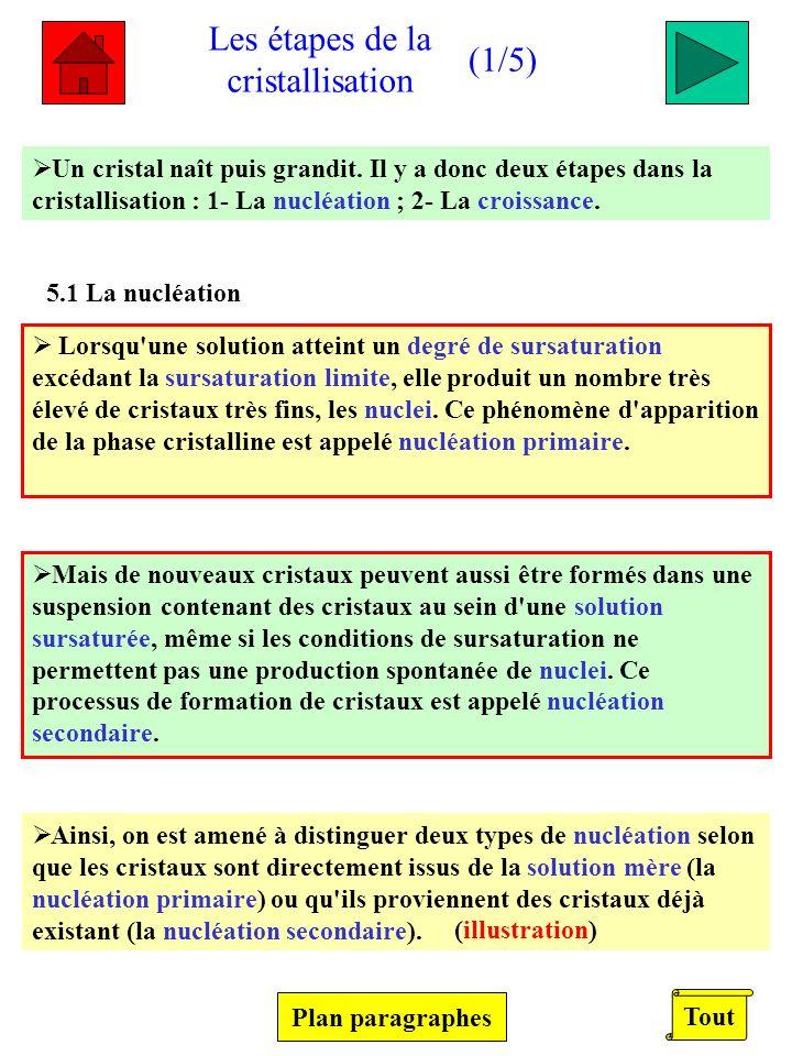 Les étapes de la cristallisation (1/5) (1/5) Un cristal naît puis grandit. Il y a donc deux étapes dans la cristallisation : 1- La nucléation ; 2- La