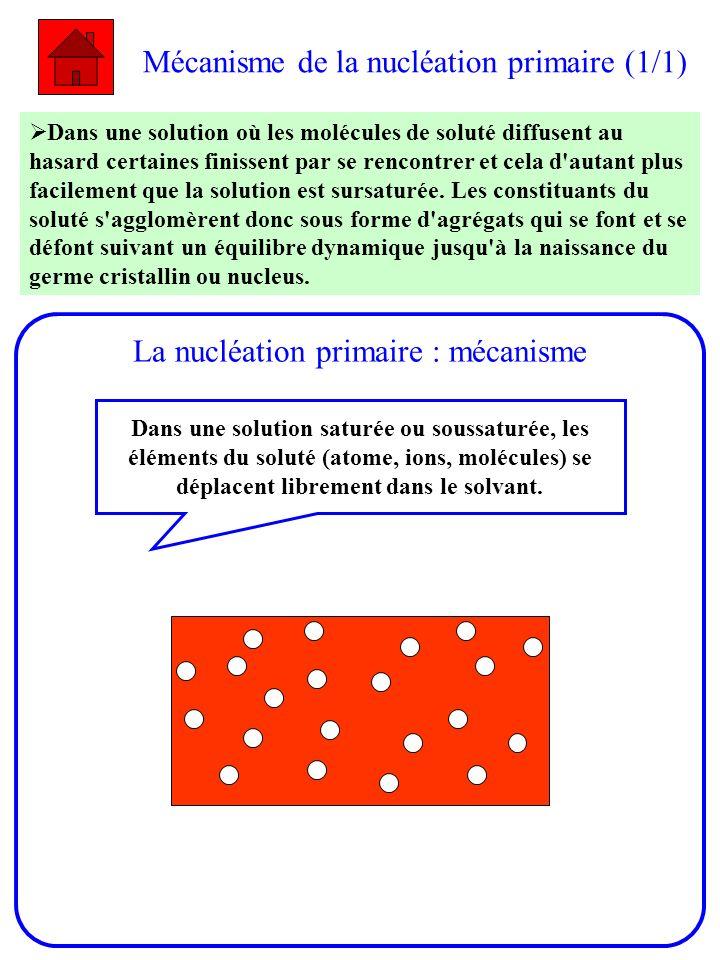 Mécanisme de la nucléation primaire (1/1) Dans une solution où les molécules de soluté diffusent au hasard certaines finissent par se rencontrer et ce