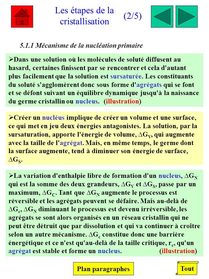 Définitions (2/2) Unité de croissance : Eléments constituant le soluté (atomes, ions, molécules…).