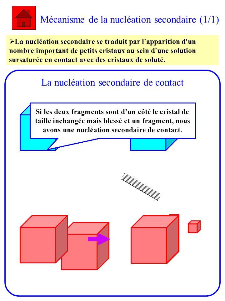 Mécanisme de la nucléation secondaire (1/1) La nucléation secondaire se traduit par l'apparition d'un nombre important de petits cristaux au sein d'un