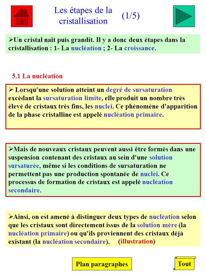 Les étapes de la cristallisation (1/5) 1 (1/5) Un cristal naît puis grandit. Il y a donc deux étapes dans la cristallisation : 1- La nucléation ; 2- L