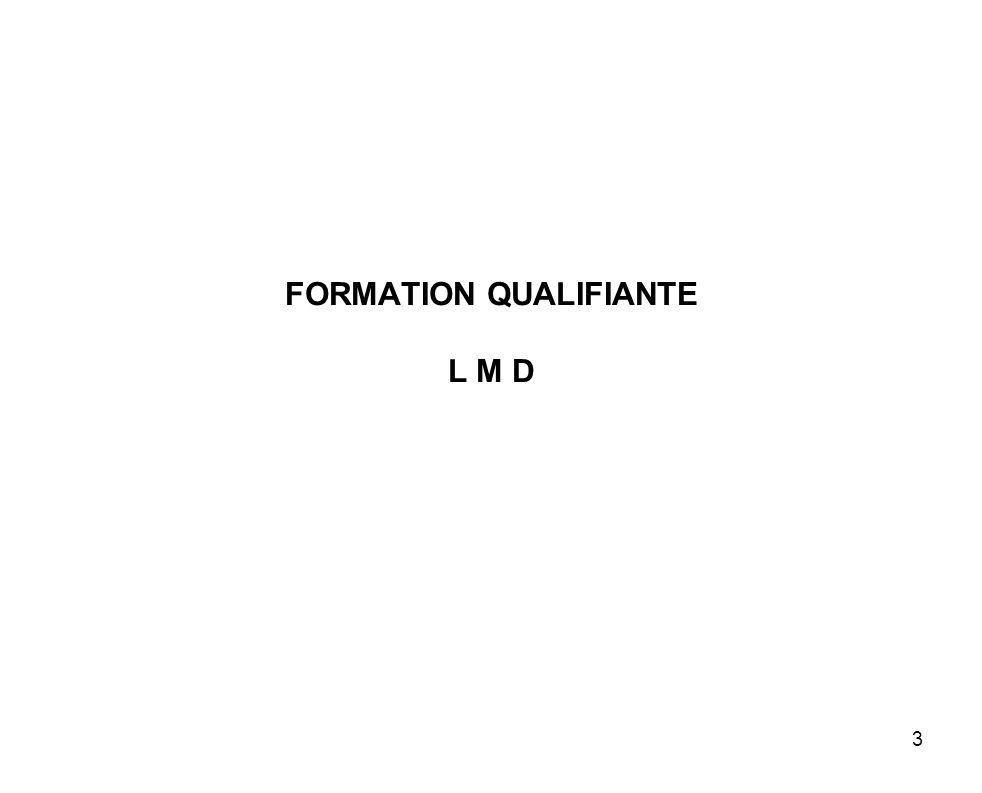 3 FORMATION QUALIFIANTE L M D