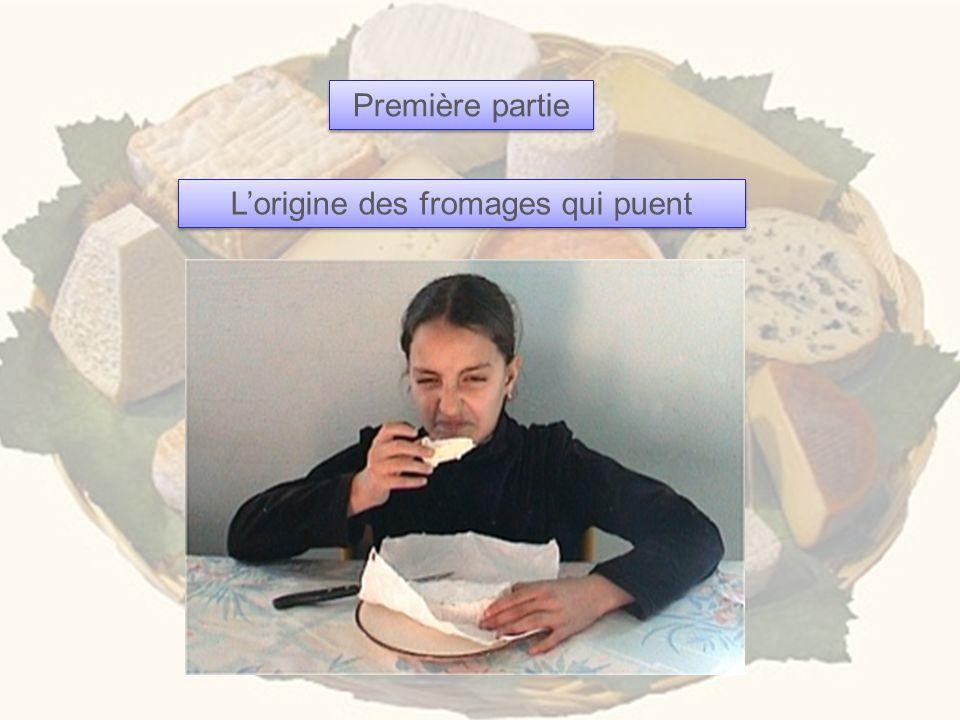 Première partie Lorigine des fromages qui puent