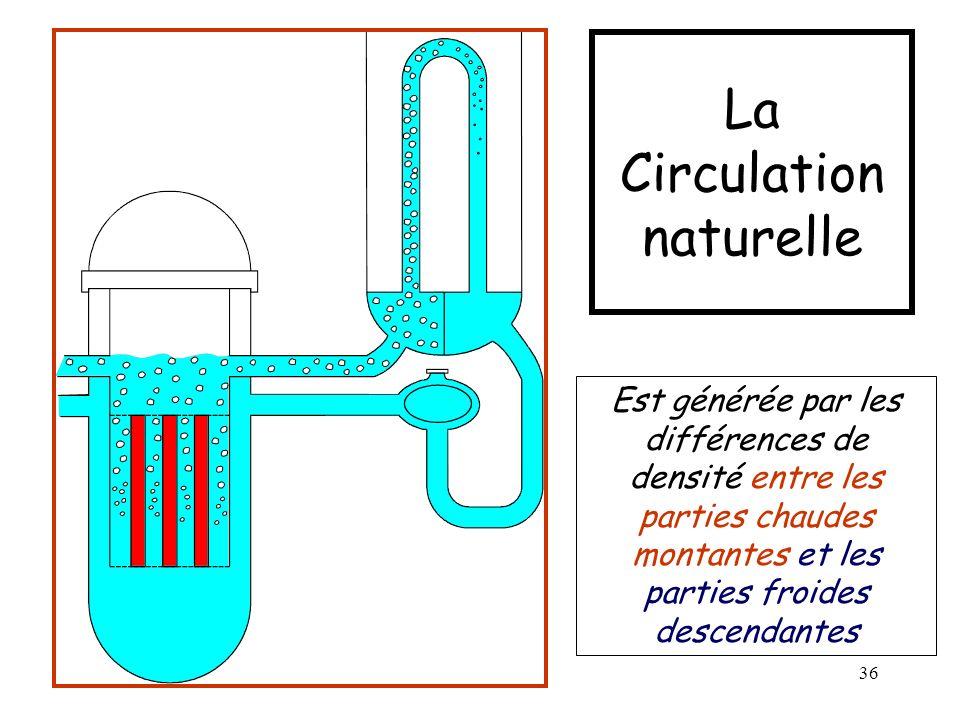 36 La Circulation naturelle Est générée par les différences de densité entre les parties chaudes montantes et les parties froides descendantes