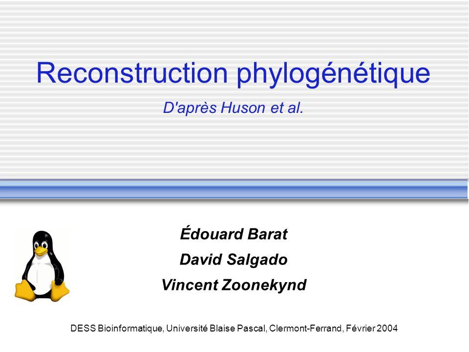DESS Bioinformatique, Université Blaise Pascal, Clermont-Ferrand, Février 2004 Reconstruction phylogénétique D'après Huson et al. Édouard Barat David