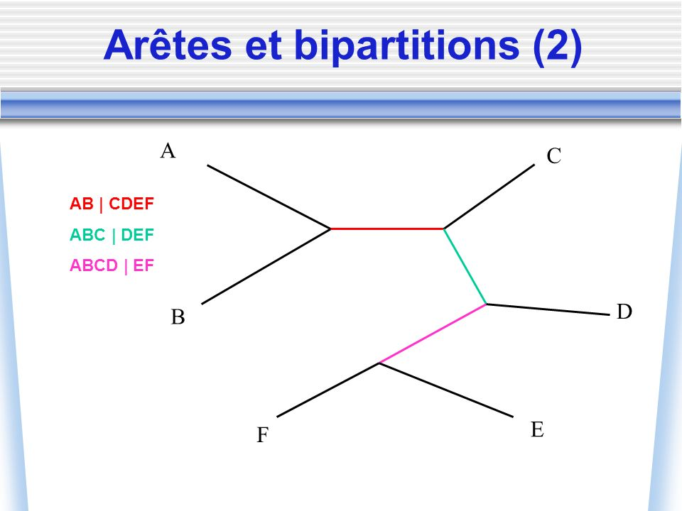 Arêtes et bipartitions (2) A B C D E F AB | CDEF ABC | DEF ABCD | EF