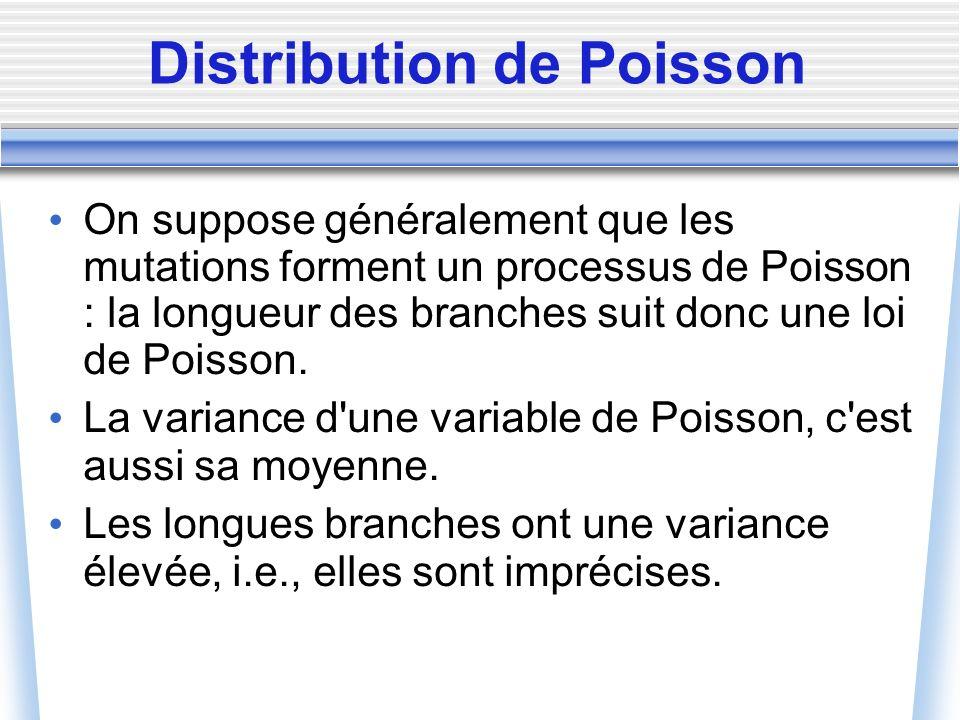 Distribution de Poisson On suppose généralement que les mutations forment un processus de Poisson : la longueur des branches suit donc une loi de Pois