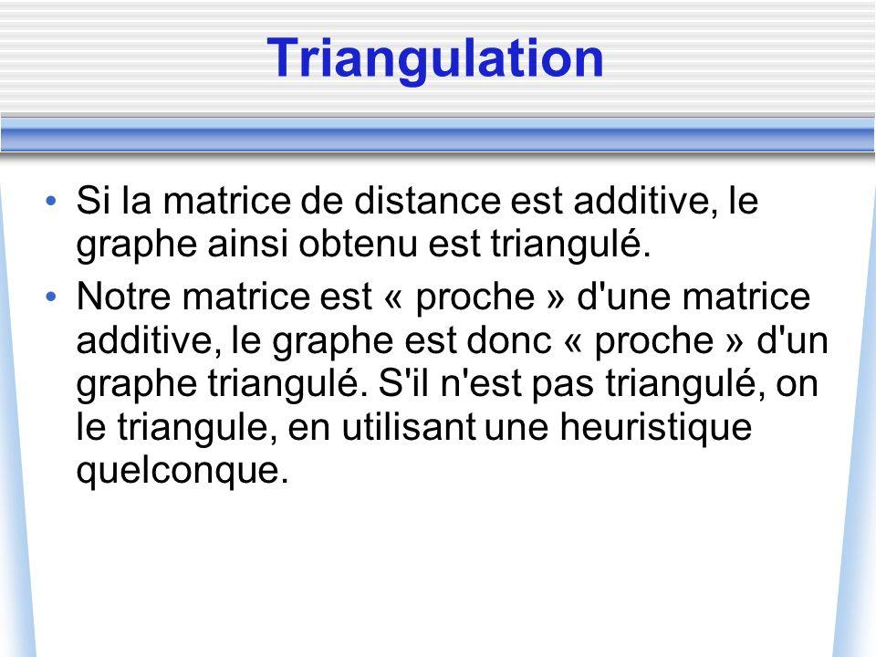 Triangulation Si la matrice de distance est additive, le graphe ainsi obtenu est triangulé. Notre matrice est « proche » d'une matrice additive, le gr