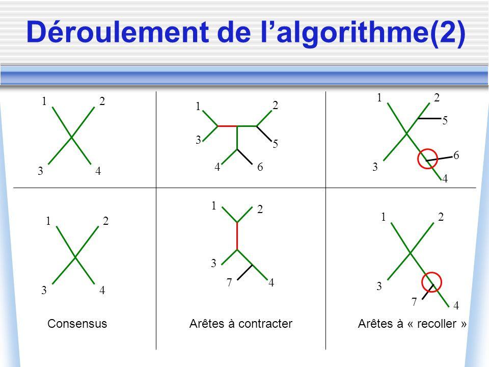 Déroulement de lalgorithme(2) 1 2 43 1 2 5 4 3 6 1 2 3 47 ConsensusArêtes à contracter 1 2 43 1 2 4 3 1 2 4 3 5 6 7 Arêtes à « recoller »