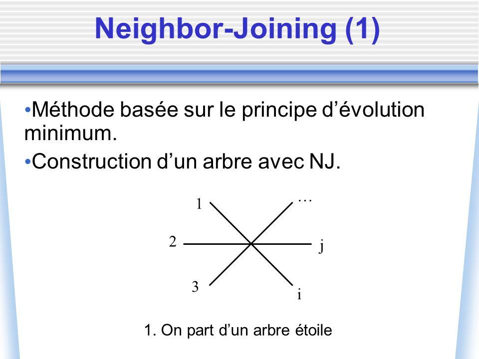 Méthode basée sur le principe dévolution minimum. Construction dun arbre avec NJ. 1 2 3 … j i 1. On part dun arbre étoile Neighbor-Joining (1)