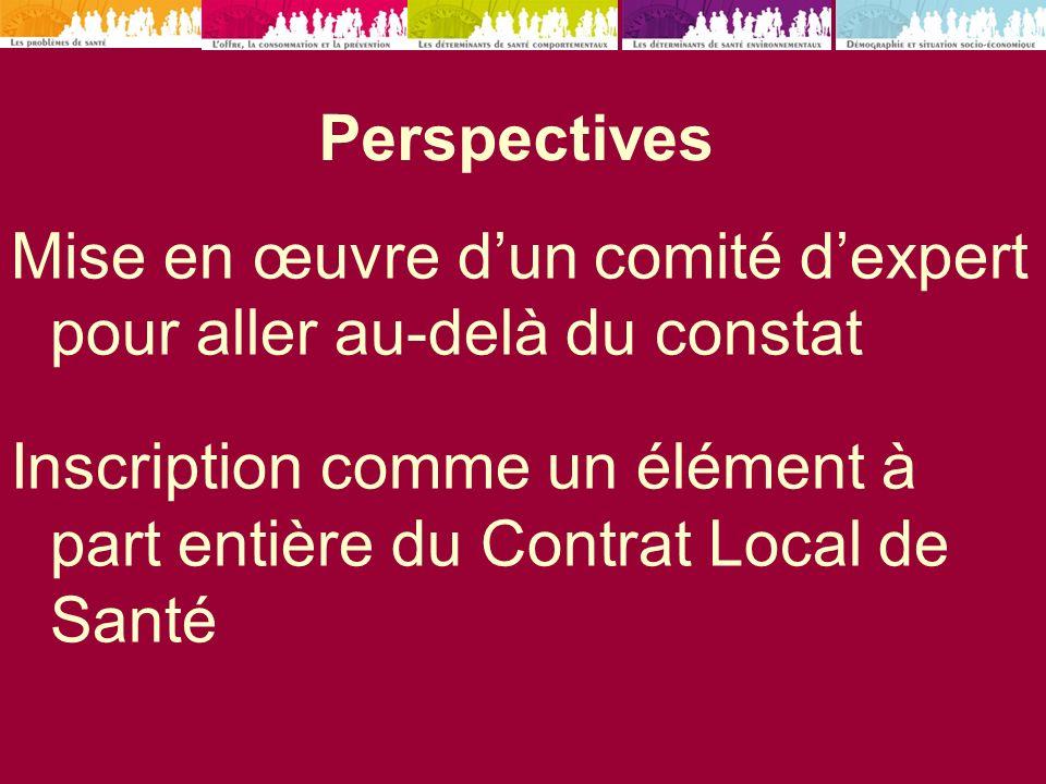 Perspectives Mise en œuvre dun comité dexpert pour aller au-delà du constat Inscription comme un élément à part entière du Contrat Local de Santé