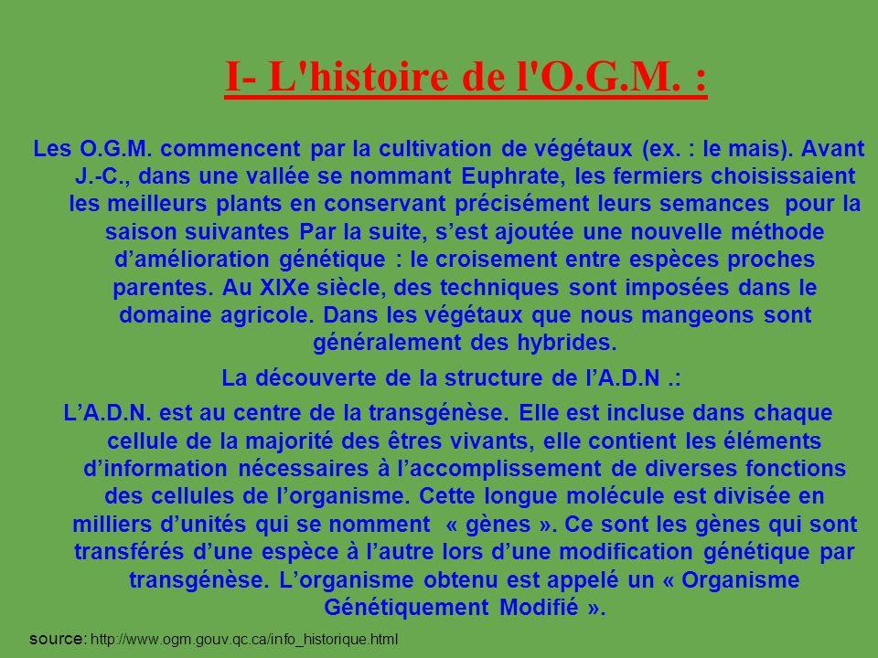 I- L'histoire de l'O.G.M. : Les O.G.M. commencent par la cultivation de végétaux (ex. : le mais). Avant J.-C., dans une vallée se nommant Euphrate, le