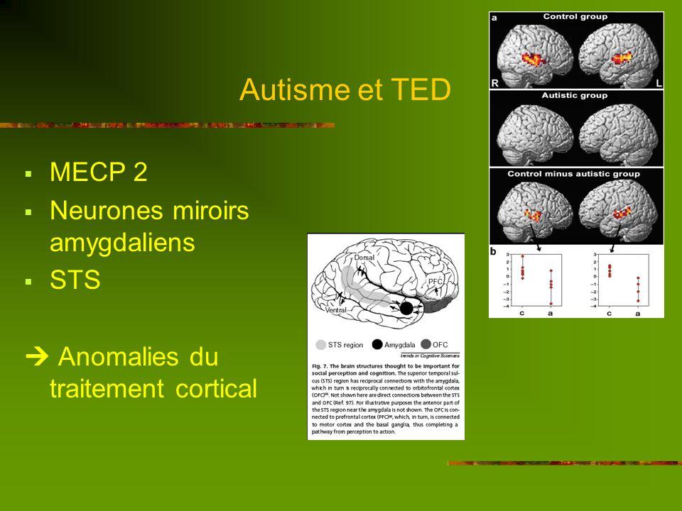 Autisme et TED 3. Etiologie Origine neuro-développementale Hypothèses actuelles : génétiques Plusieurs gènes (vulnérabilité génétique) +- interaction