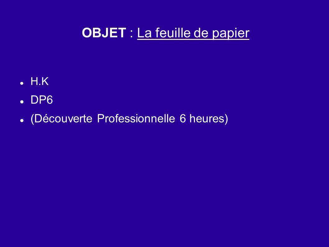 OBJET : La feuille de papier H.K DP6 (Découverte Professionnelle 6 heures)
