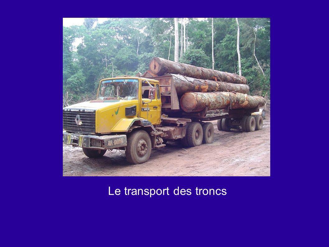 Le transport des troncs
