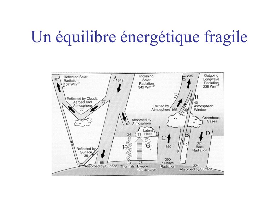 Augmentation du puits atmosphérique de dioxyde de carbone.