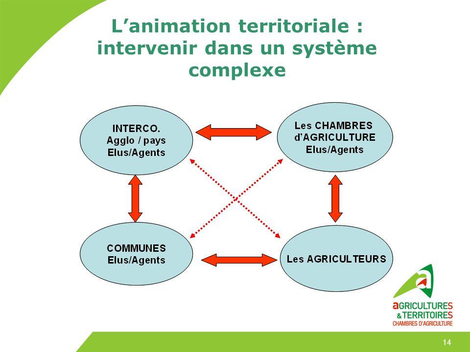 14 Lanimation territoriale : intervenir dans un système complexe