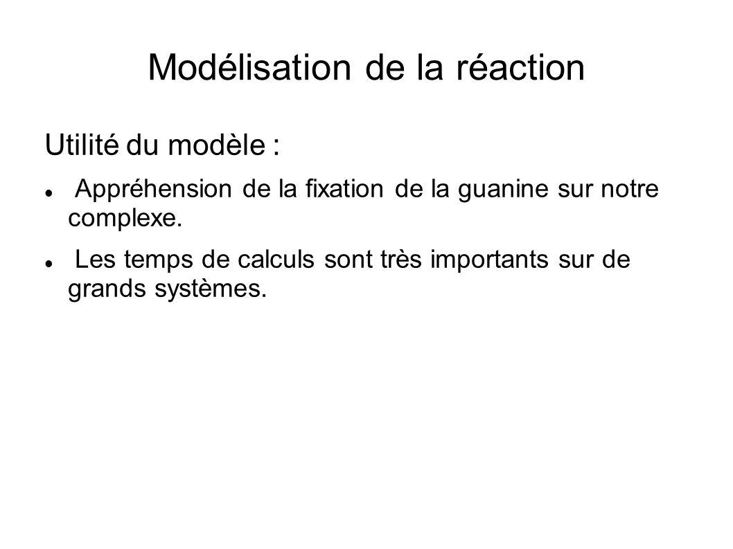 Modélisation de la réaction Utilité du modèle : Appréhension de la fixation de la guanine sur notre complexe. Les temps de calculs sont très important