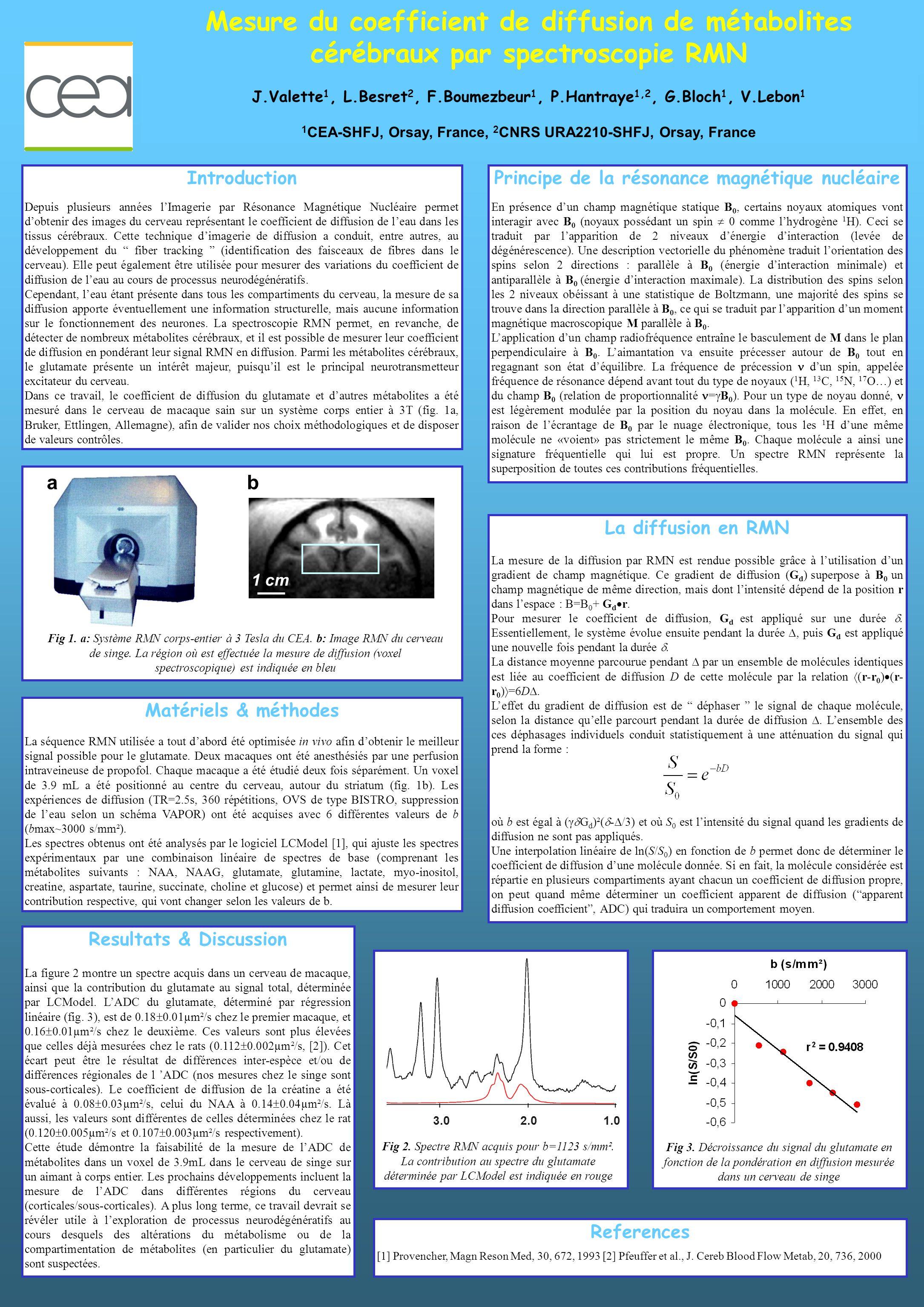 La diffusion en RMN La mesure de la diffusion par RMN est rendue possible grâce à lutilisation dun gradient de champ magnétique. Ce gradient de diffus