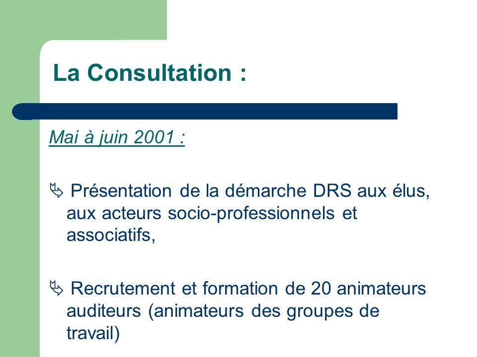 Mai à juin 2001 : Présentation de la démarche DRS aux élus, aux acteurs socio-professionnels et associatifs, Recrutement et formation de 20 animateurs auditeurs (animateurs des groupes de travail) La Consultation :